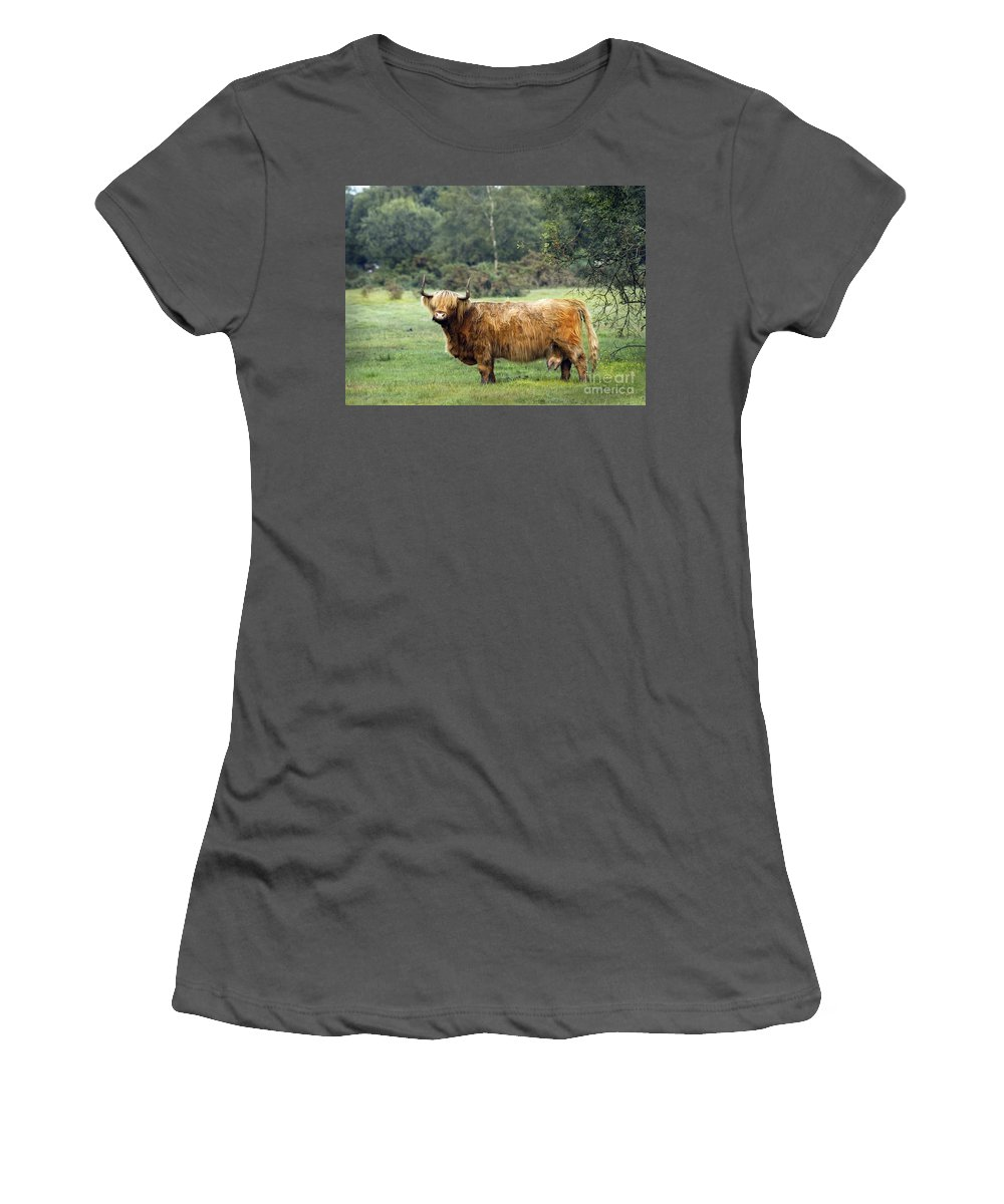 Heilan Coo Women's T-Shirt (Athletic Fit) featuring the photograph Heilan Coo by Angel Ciesniarska