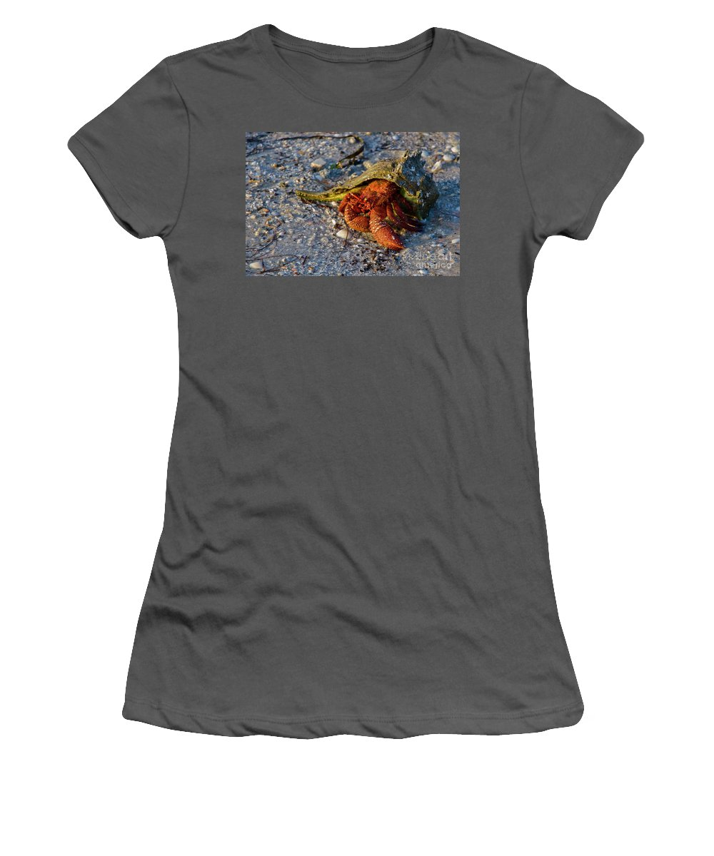 Hermit Crab Women's T-Shirt (Athletic Fit) featuring the photograph Hermit Crab- Florida by ME Procopio