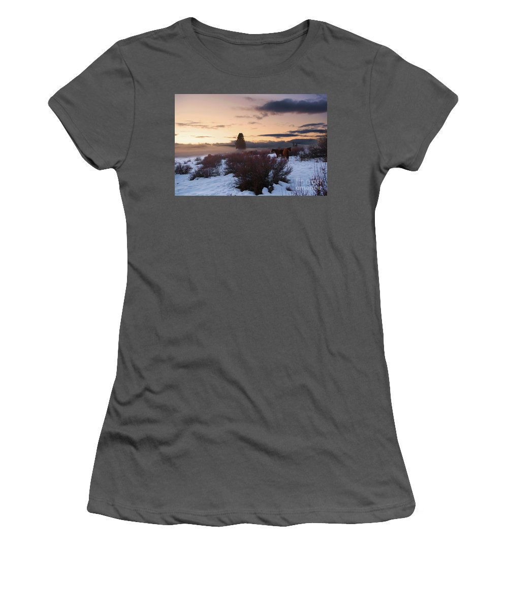 Oregon Women's T-Shirt (Athletic Fit) featuring the photograph Horses In Snow At Sunset by Jackie Follett