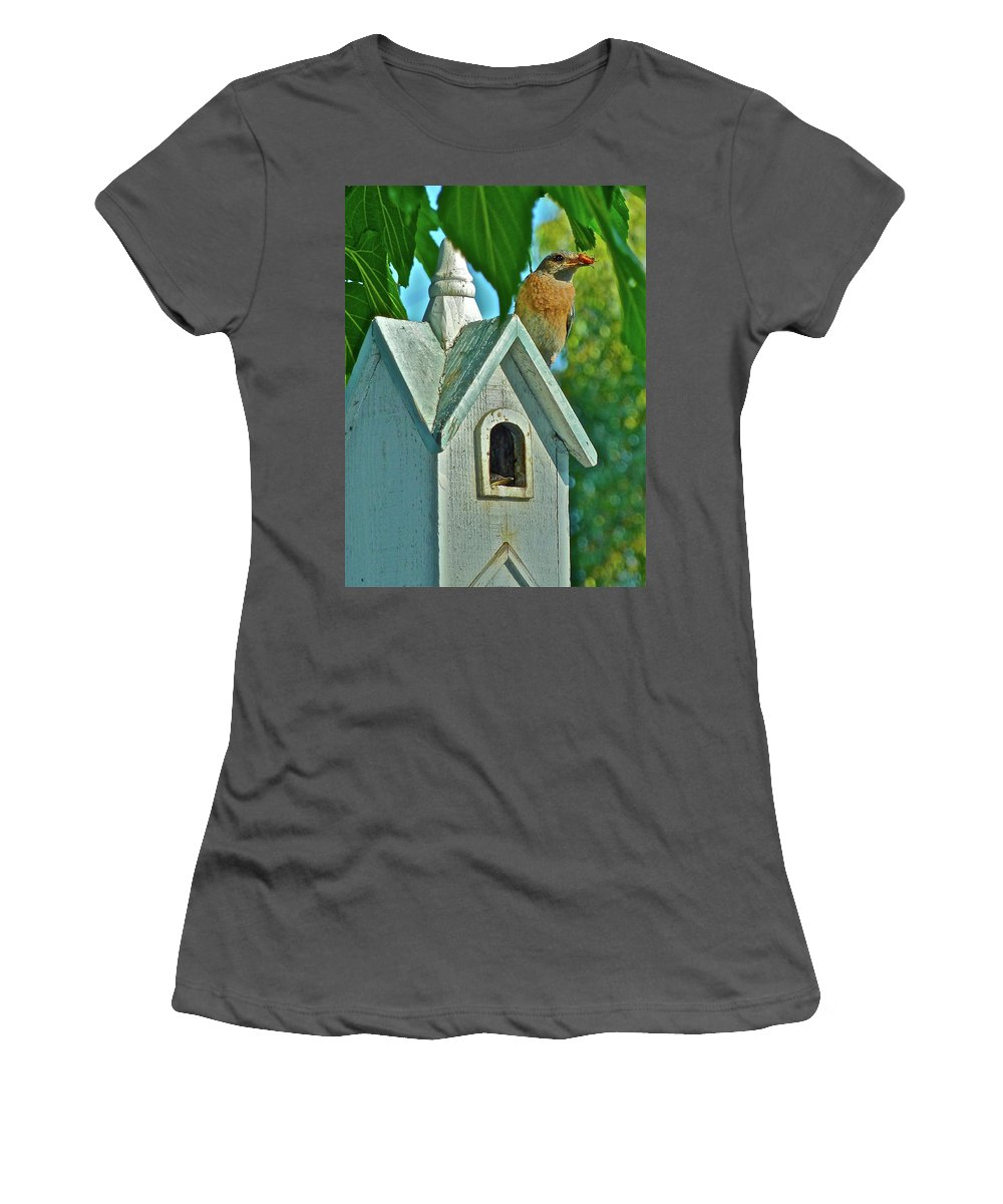 Birds Women's T-Shirt (Athletic Fit) featuring the photograph Hungry Baby by Diana Hatcher