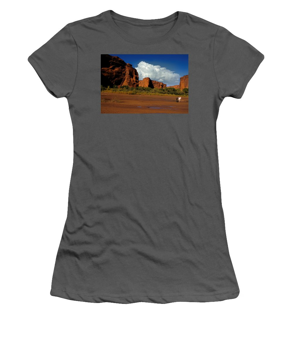 Horses Women's T-Shirt (Athletic Fit) featuring the photograph Indian Ponies In The Canyon by Jerry McElroy