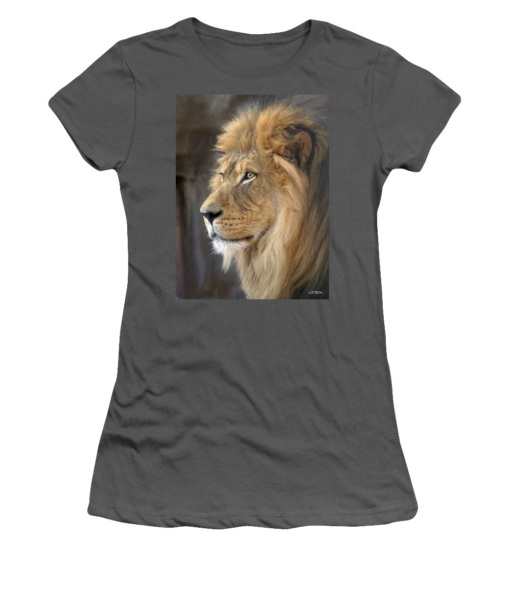 Lions Women's T-Shirt (Athletic Fit) featuring the photograph Israel by Bill Stephens