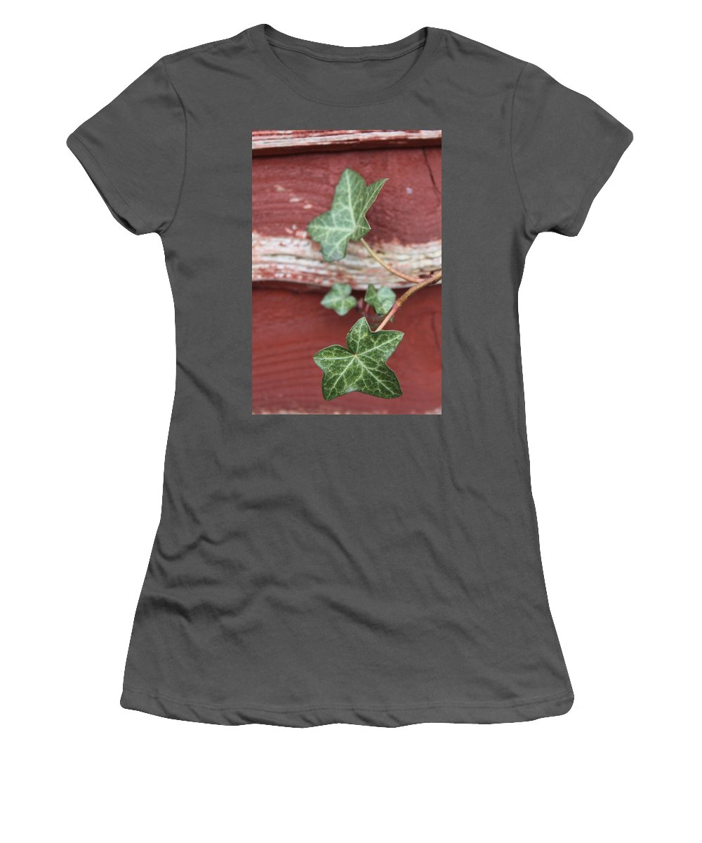Ivy Women's T-Shirt (Athletic Fit) featuring the photograph Ivy by Lauri Novak