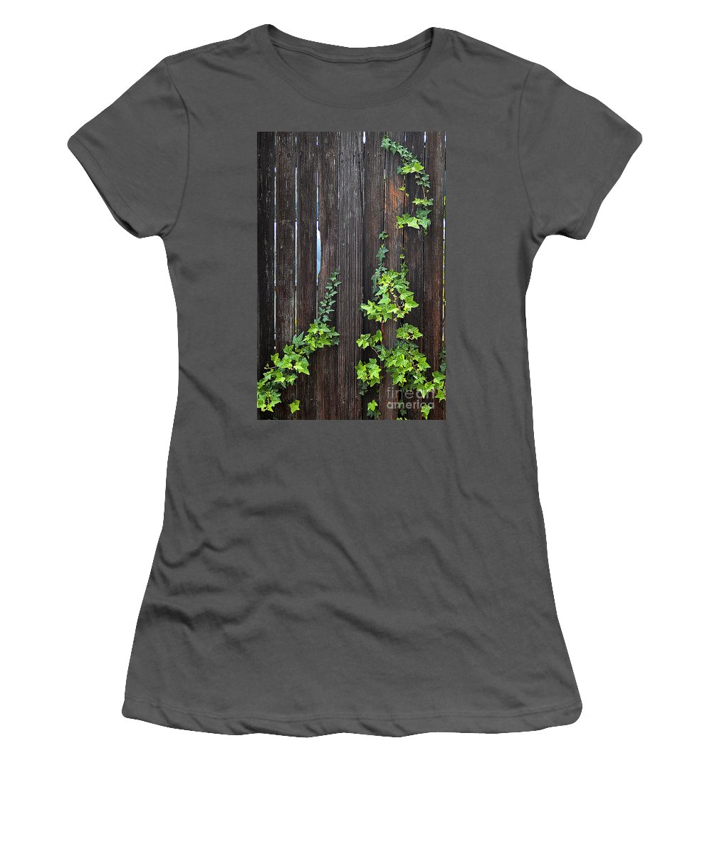 Clay Women's T-Shirt (Athletic Fit) featuring the photograph Ivy On Fence by Clayton Bruster