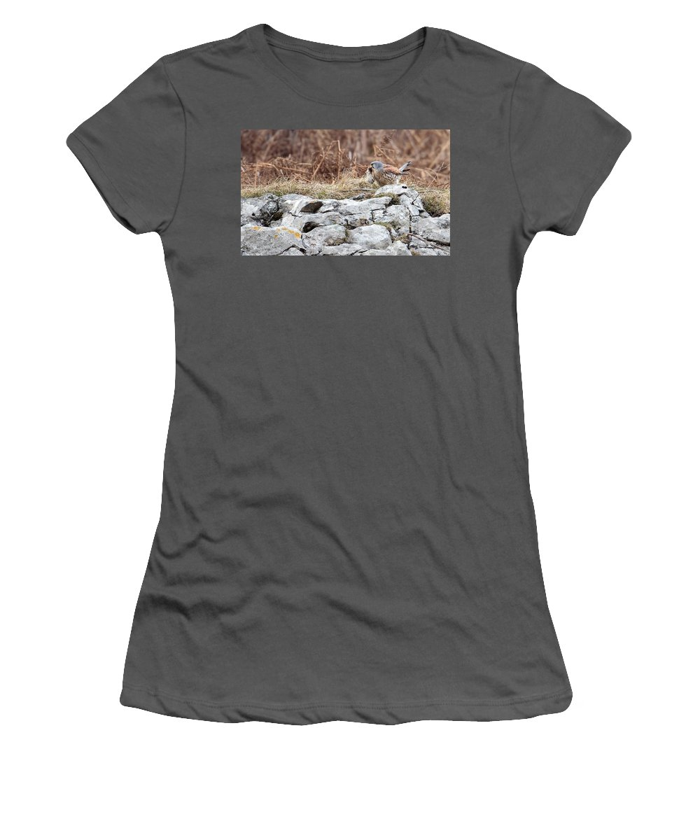 Kestrel Women's T-Shirt (Athletic Fit) featuring the photograph Kestrel With Prey by Bob Kemp