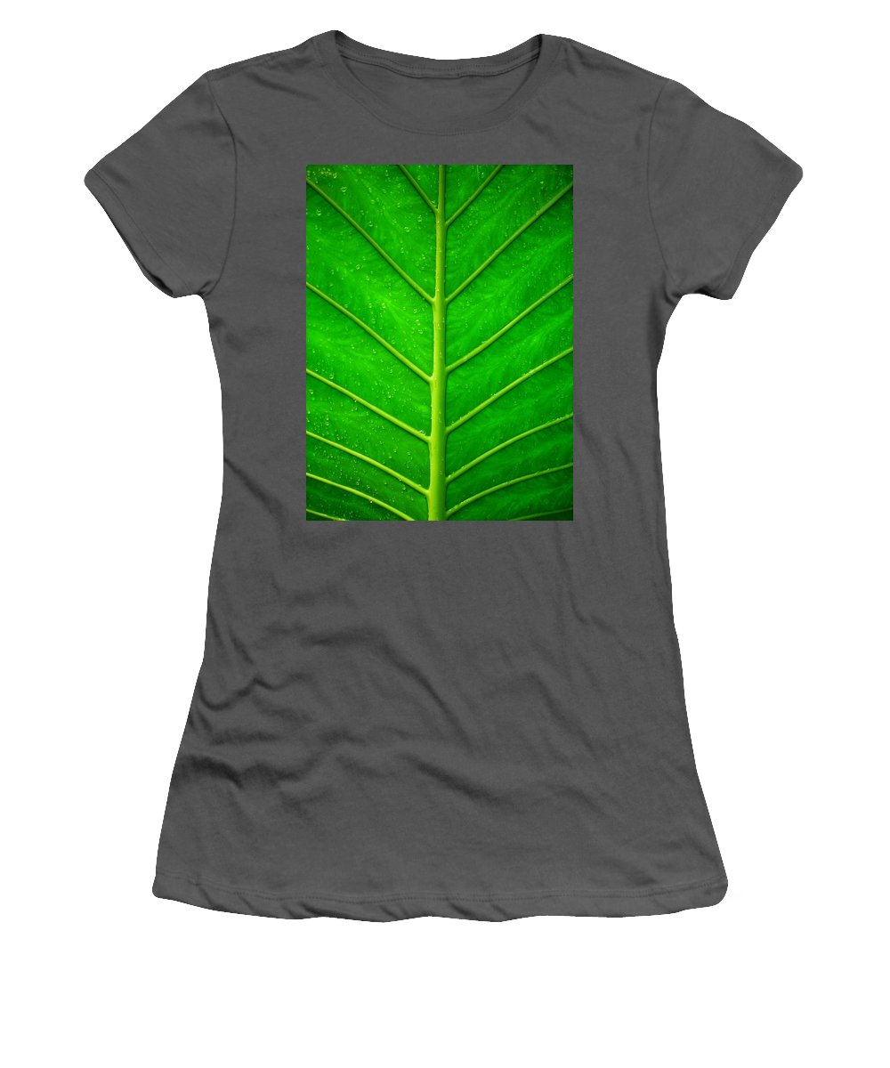 Plant Women's T-Shirt (Athletic Fit) featuring the photograph Kiss The Rain ... by Juergen Weiss