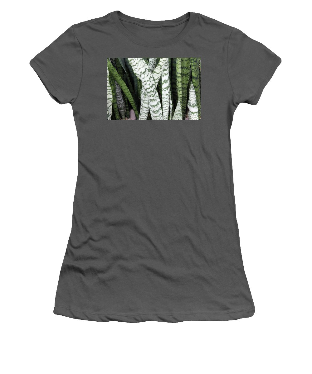 Nature Women's T-Shirt (Athletic Fit) featuring the photograph Legs by Munir Alawi