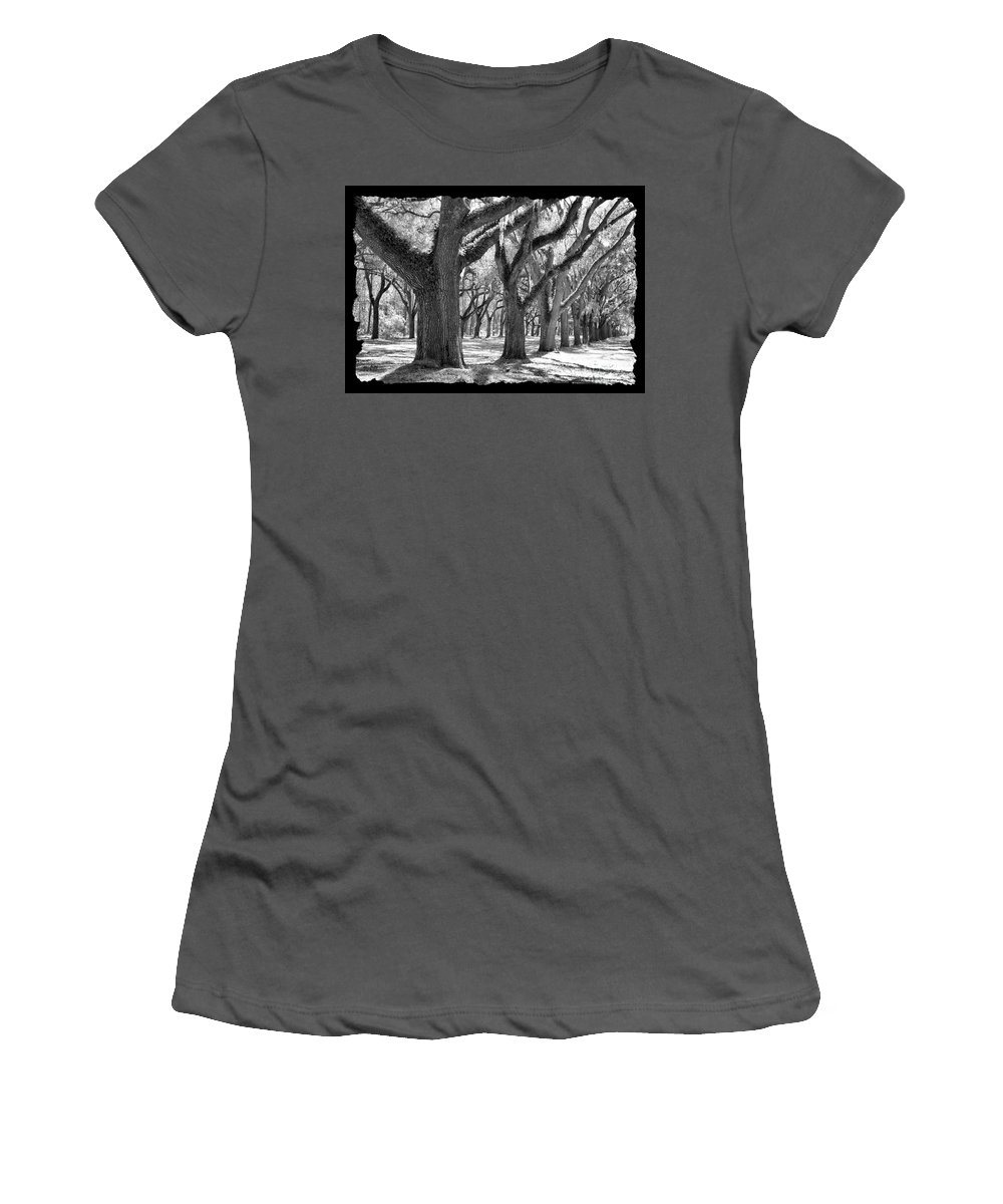 Live Oaks Women's T-Shirt (Athletic Fit) featuring the photograph Live Oak Giants - Black And White Framing by Carol Groenen
