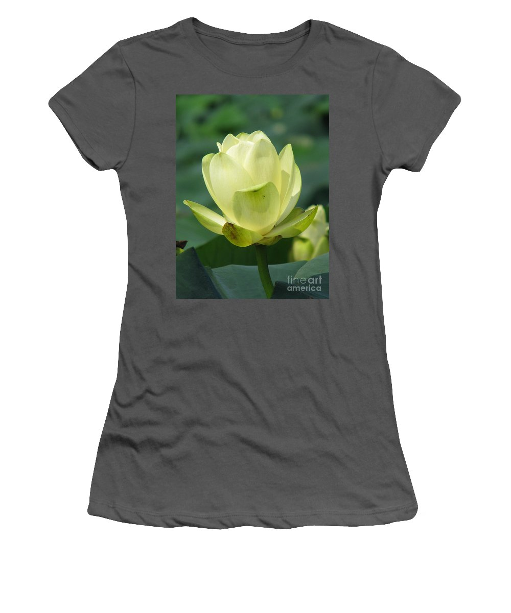Lotus Women's T-Shirt (Athletic Fit) featuring the photograph Lotus by Amanda Barcon
