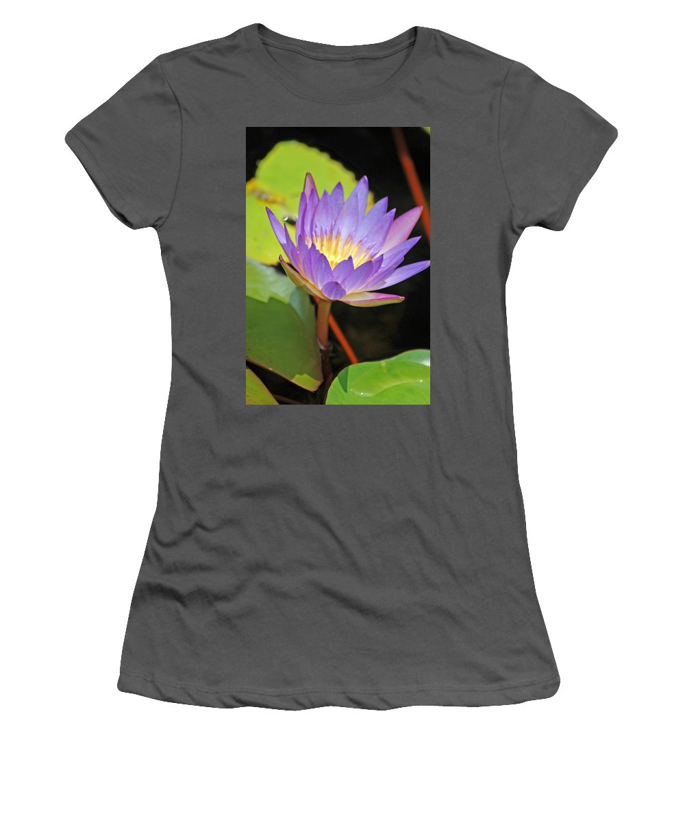 Lotus Flower Women's T-Shirt (Athletic Fit) featuring the photograph Lotus Flower by Donna Bentley