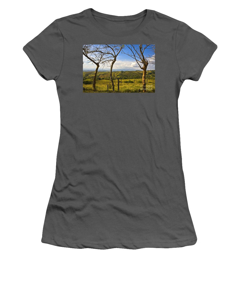 Tree Women's T-Shirt (Athletic Fit) featuring the photograph Lush Land Leafless Trees I by Madeline Ellis