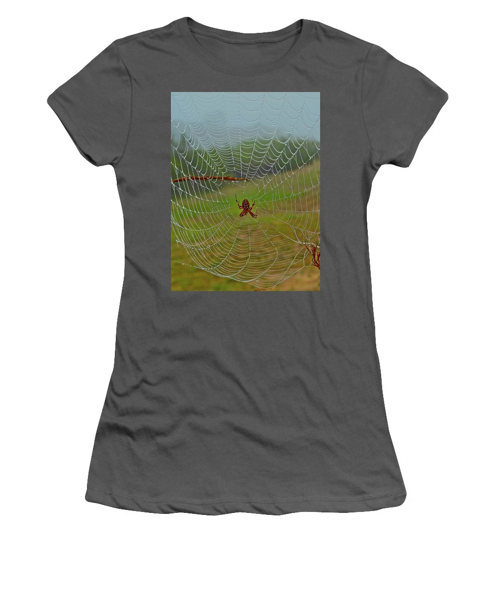 Spider Women's T-Shirt (Athletic Fit) featuring the photograph Meadow Macrame by Diana Hatcher