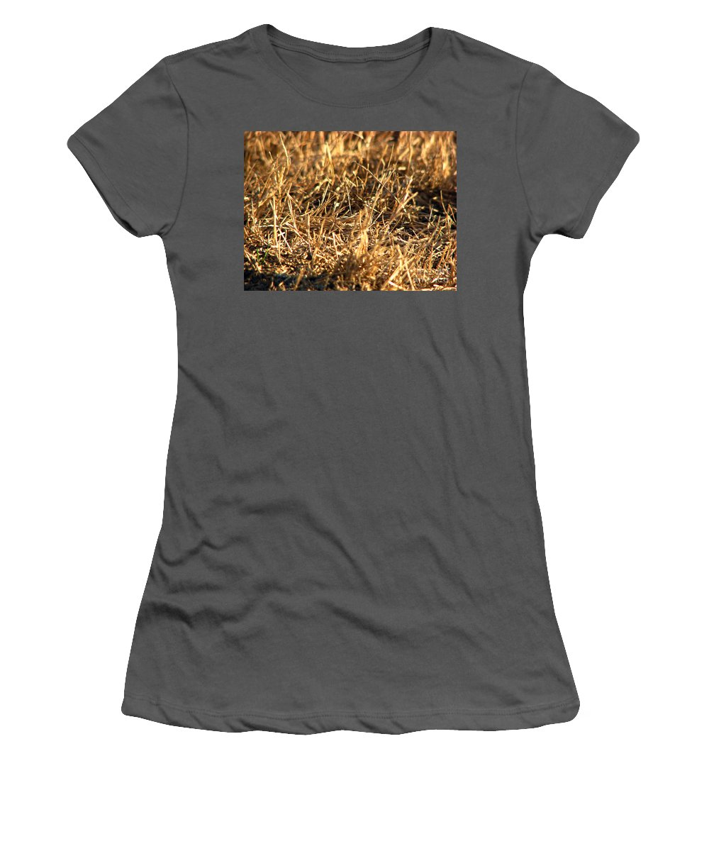 Grass Women's T-Shirt (Athletic Fit) featuring the photograph Mirrors by Amanda Barcon