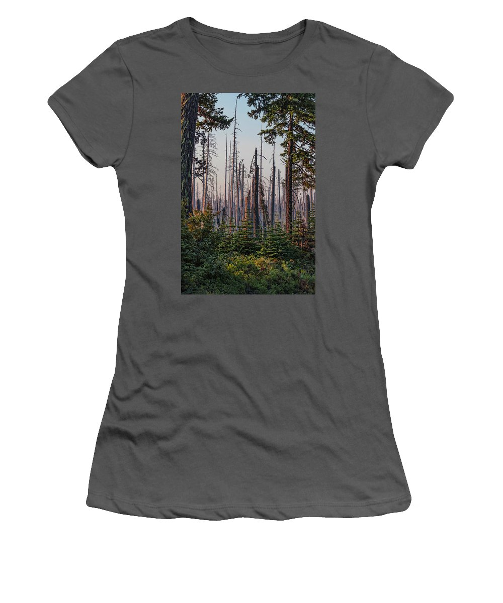 Morning Light Women's T-Shirt (Athletic Fit) featuring the pyrography Morning Light by Lorri F