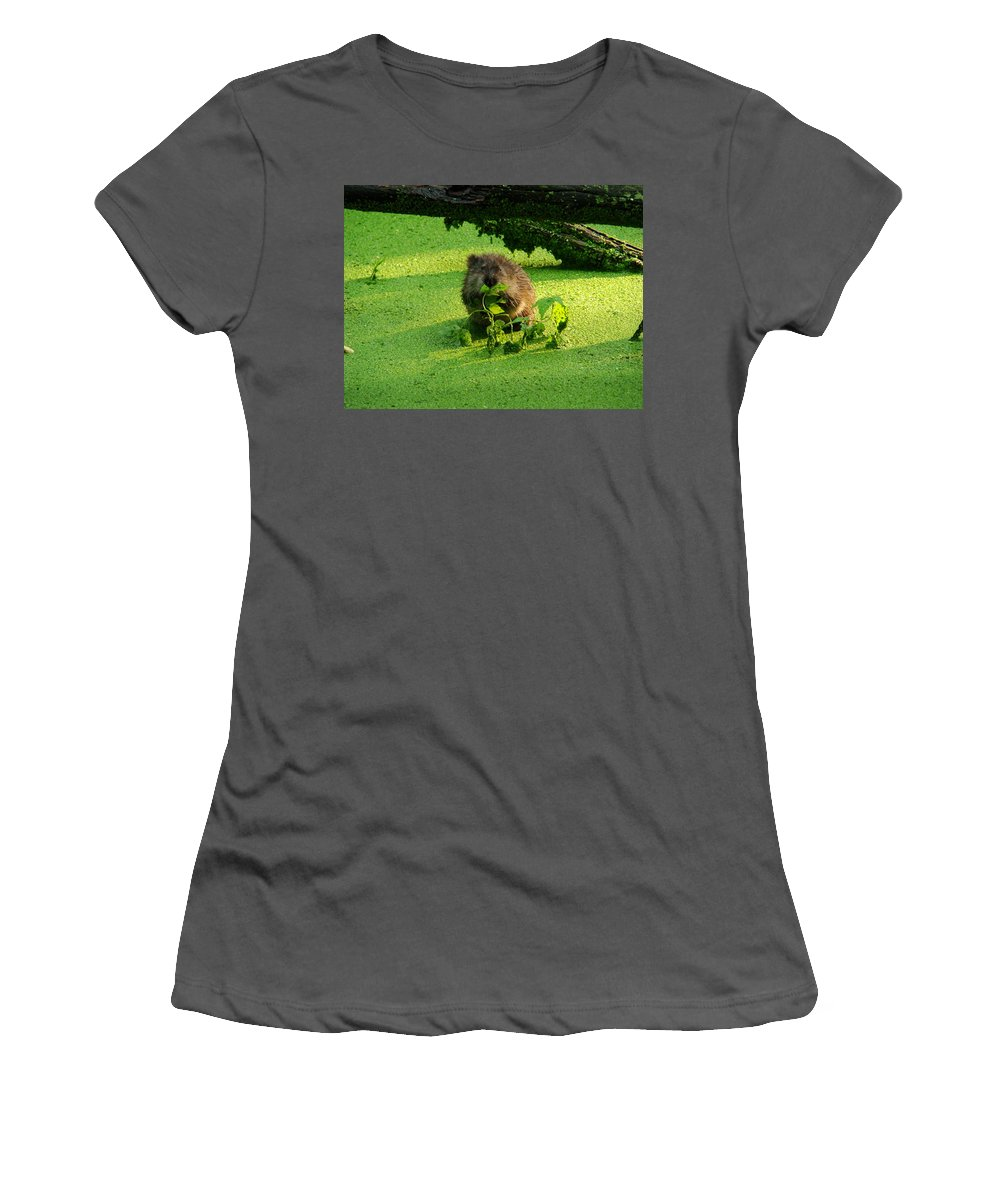 Brown Women's T-Shirt (Athletic Fit) featuring the photograph Muskrat Susie Or Muskrat Sam by Shelley Neff