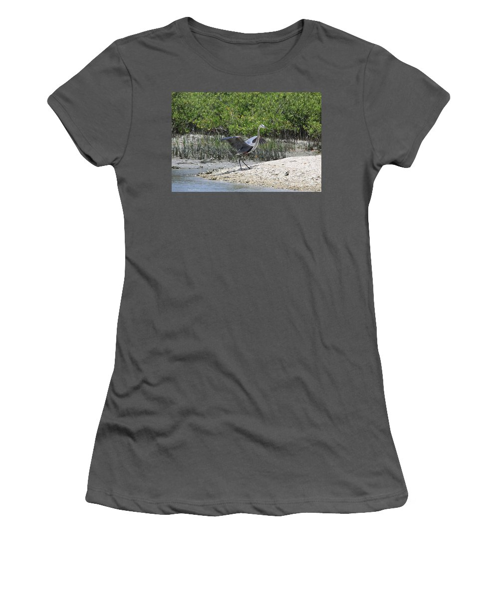 Blue Heron Women's T-Shirt (Athletic Fit) featuring the photograph Nature In Florida by Deborah Benoit