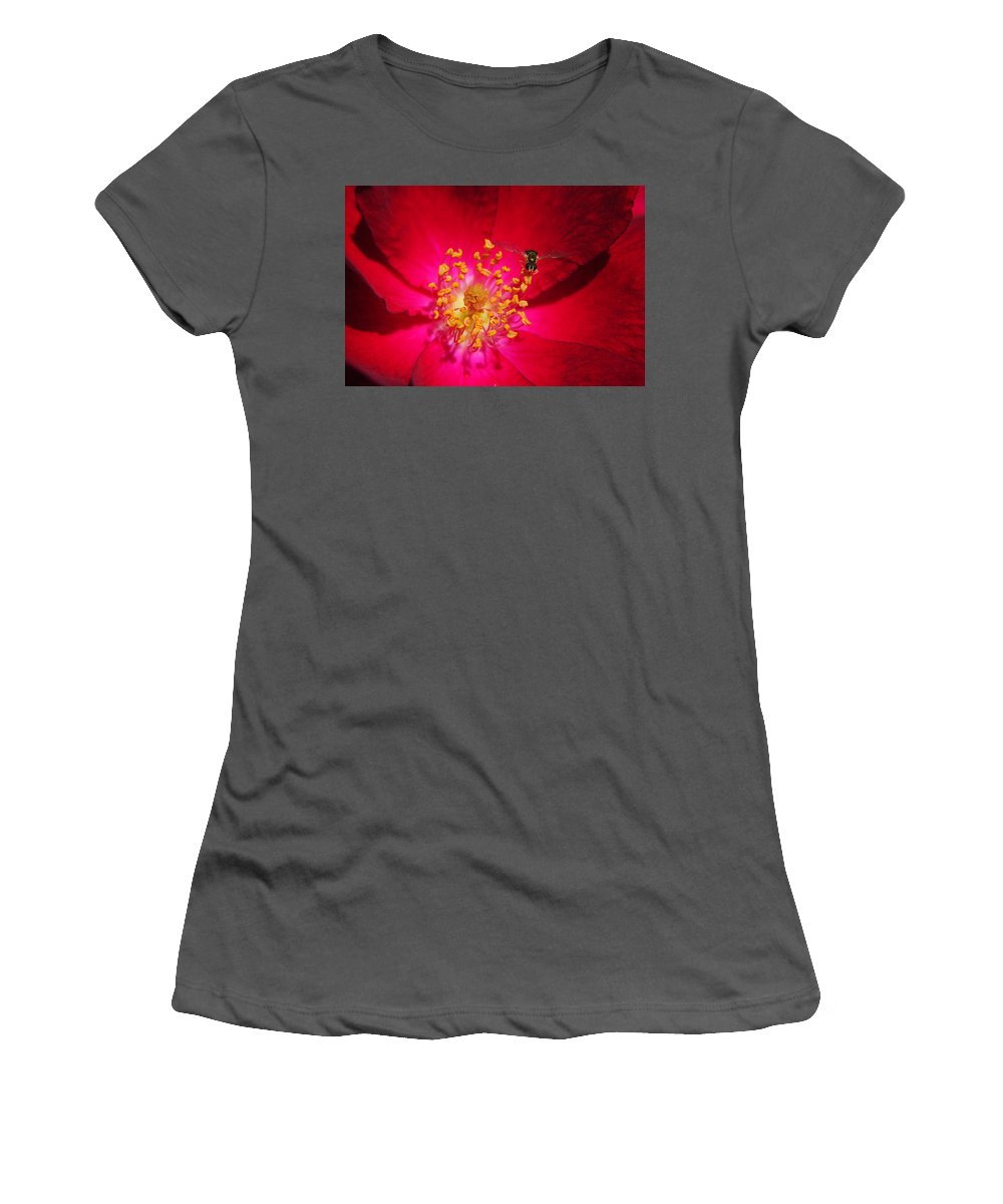 Glow Women's T-Shirt (Athletic Fit) featuring the photograph Natures Glow by Frozen in Time Fine Art Photography