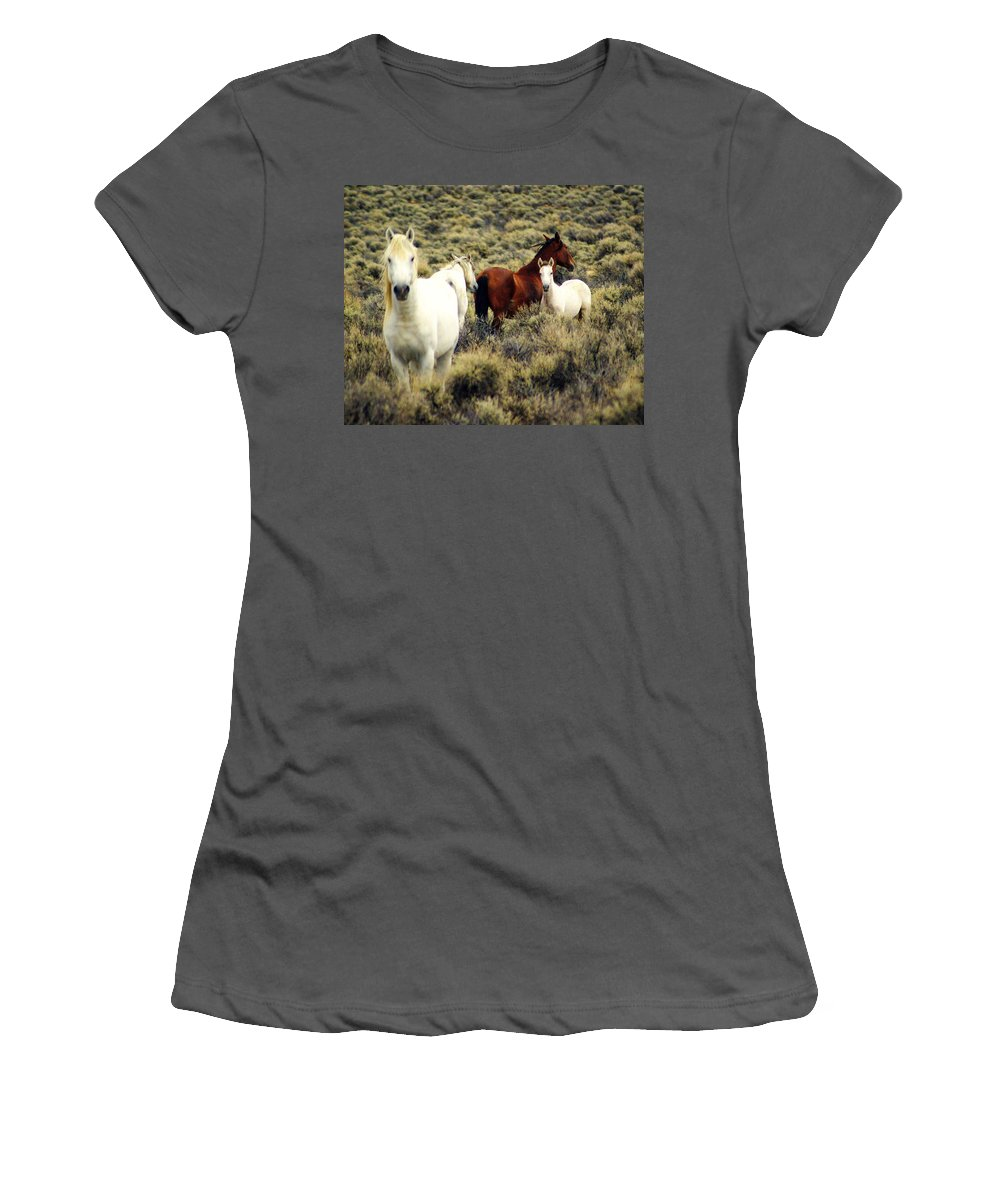 Horses Women's T-Shirt (Athletic Fit) featuring the photograph Nevada Wild Horses by Marty Koch