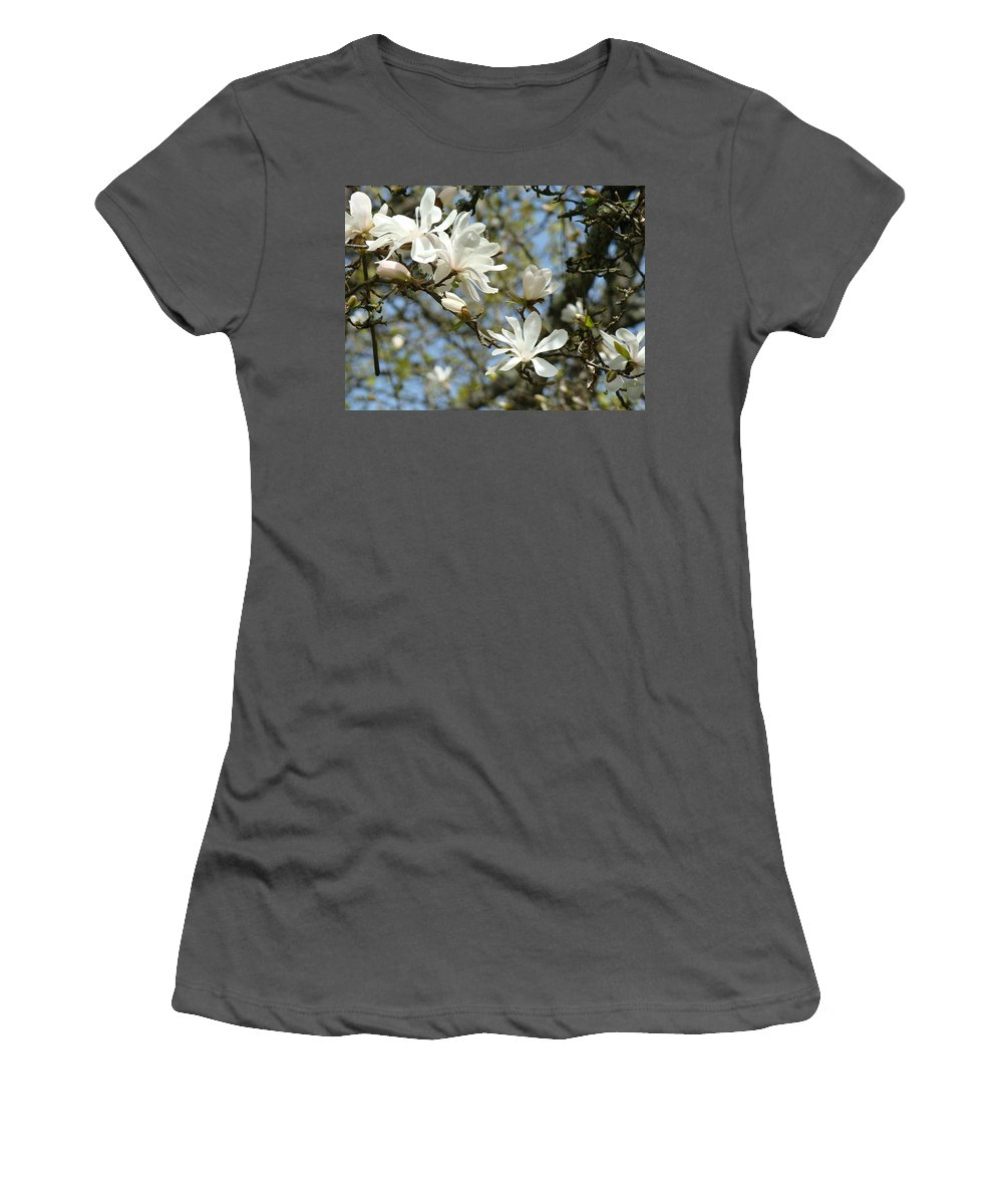 Magnolia Women's T-Shirt (Athletic Fit) featuring the photograph Office Art Prints Magnolia Tree Flowers Landscape 15 Giclee Prints Baslee Troutman by Baslee Troutman