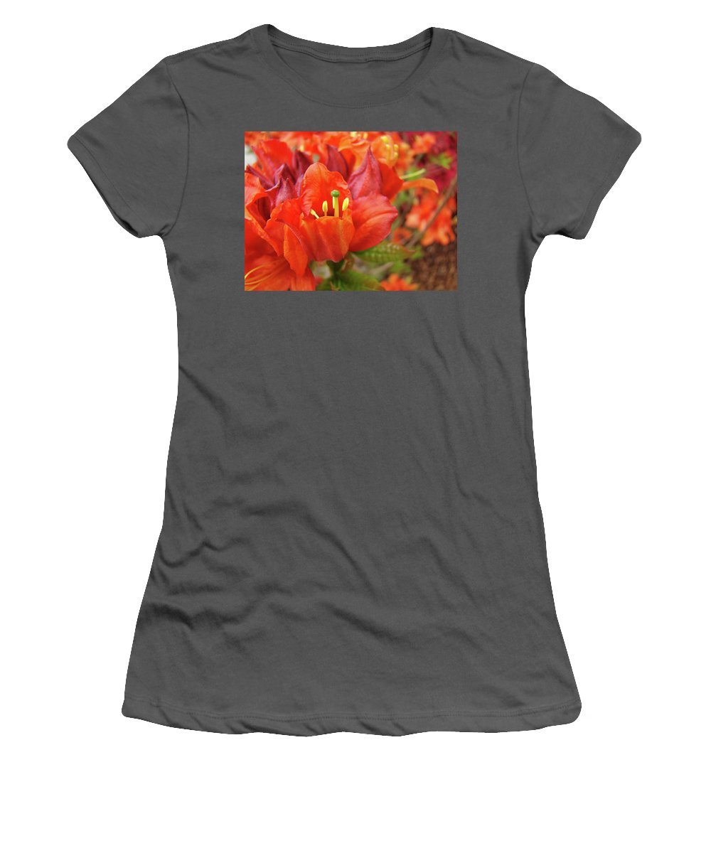 Orange Women's T-Shirt (Athletic Fit) featuring the photograph Office Art Prints Orange Azalea Flowers 20 Giclee Prints Baslee Troutman by Baslee Troutman