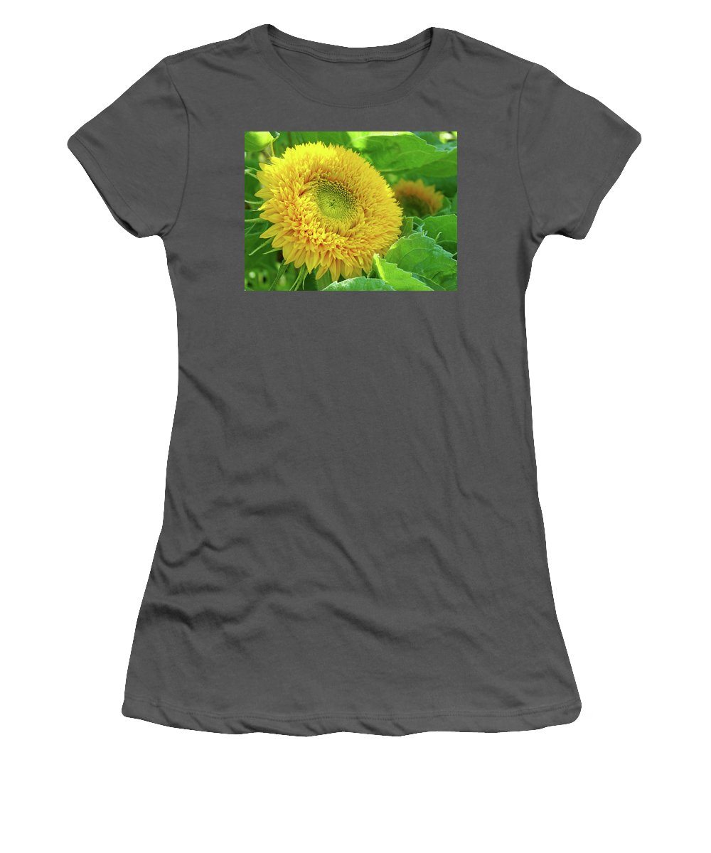 Sunflower Women's T-Shirt (Athletic Fit) featuring the photograph Office Art Sunflower Sun Flowers Giclee Baslee Troutman by Baslee Troutman