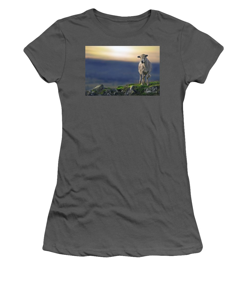Women's T-Shirt (Athletic Fit) featuring the photograph On The Top Of The World by Angel Ciesniarska
