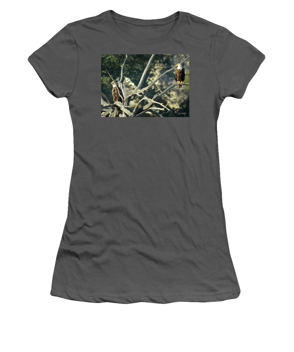 Bald Eagle Women's T-Shirt (Athletic Fit) featuring the photograph On Watch by Phill Doherty