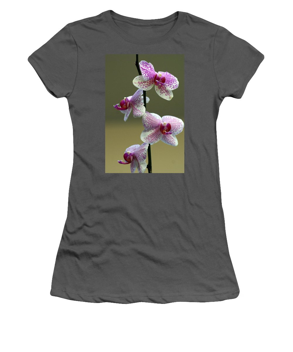 Flower Women's T-Shirt (Athletic Fit) featuring the photograph Orchid 16 by Marty Koch