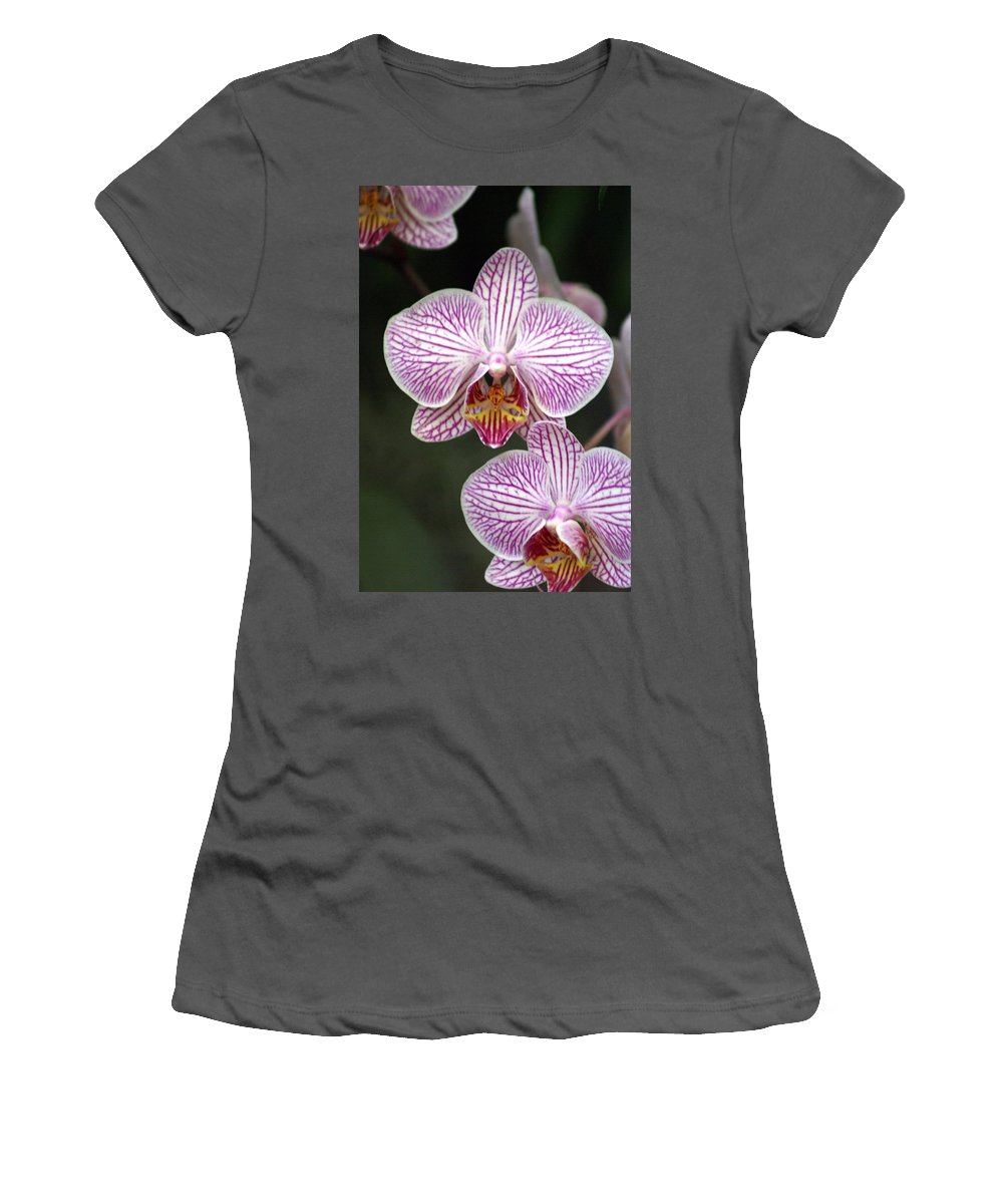 Flower Women's T-Shirt (Athletic Fit) featuring the photograph Orchid 22 by Marty Koch