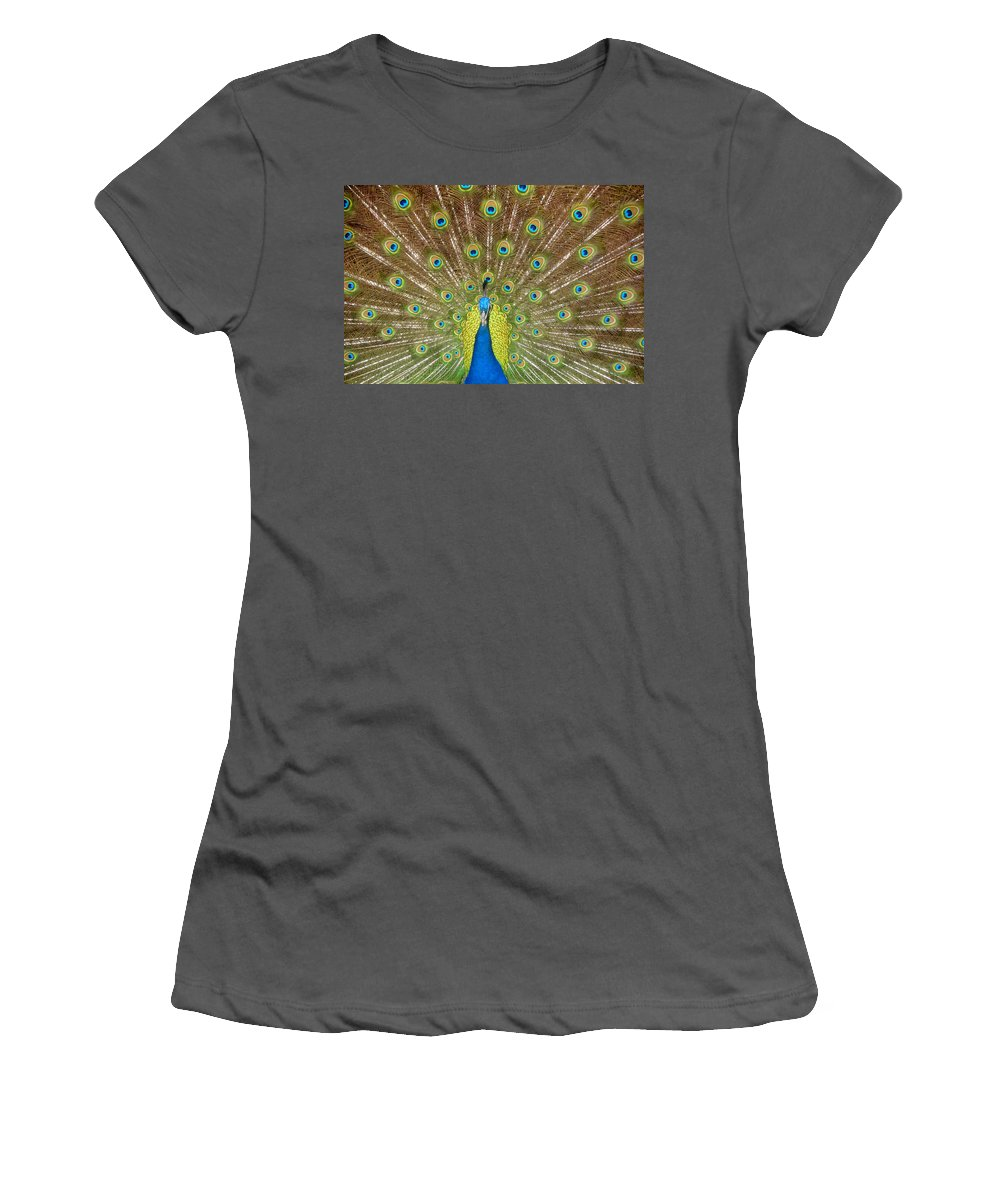 Peacock Women's T-Shirt (Athletic Fit) featuring the photograph Peacock by David Lee Thompson