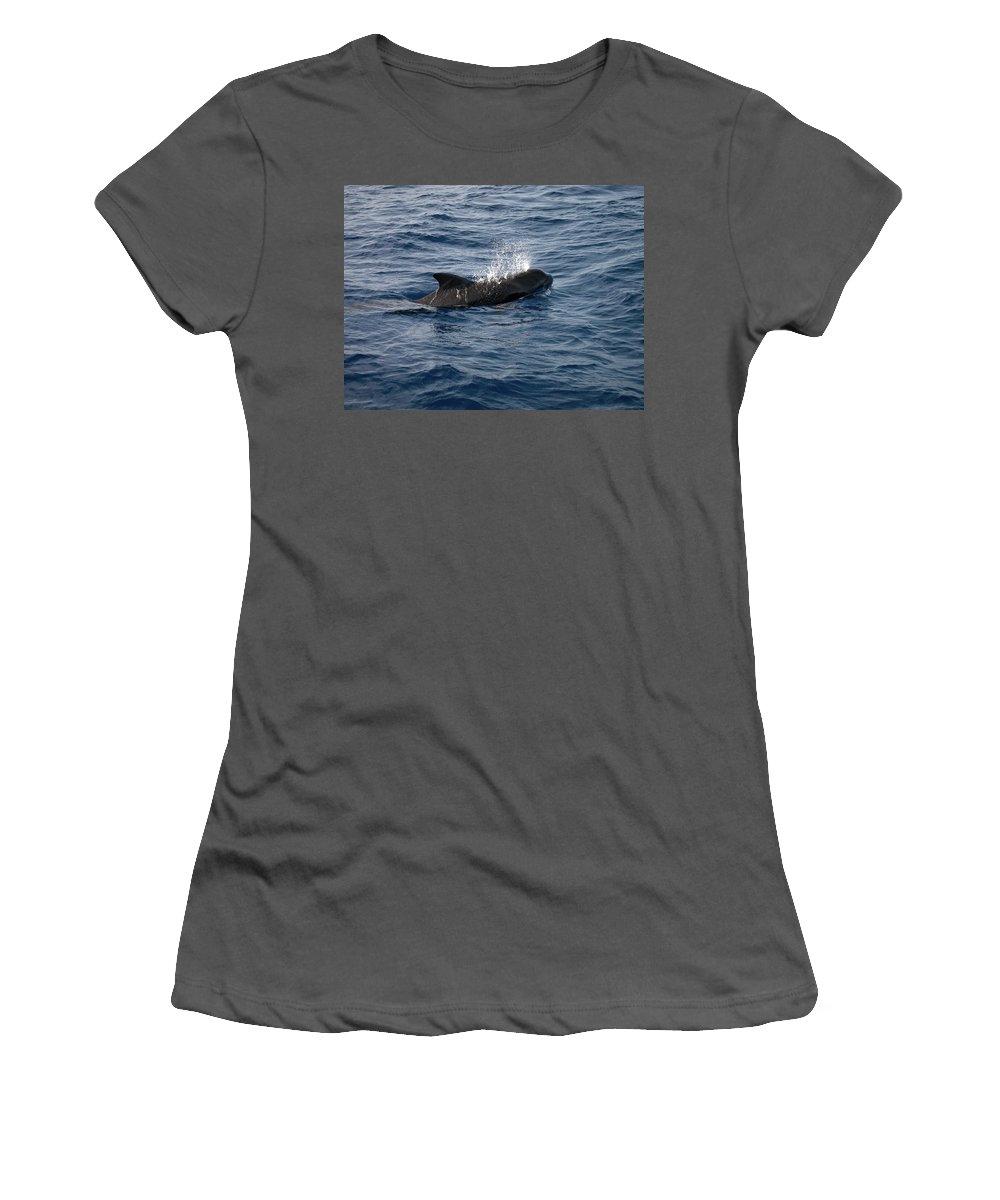 Valasretki Women's T-Shirt (Athletic Fit) featuring the photograph Pilot Whale 6 by Jouko Lehto