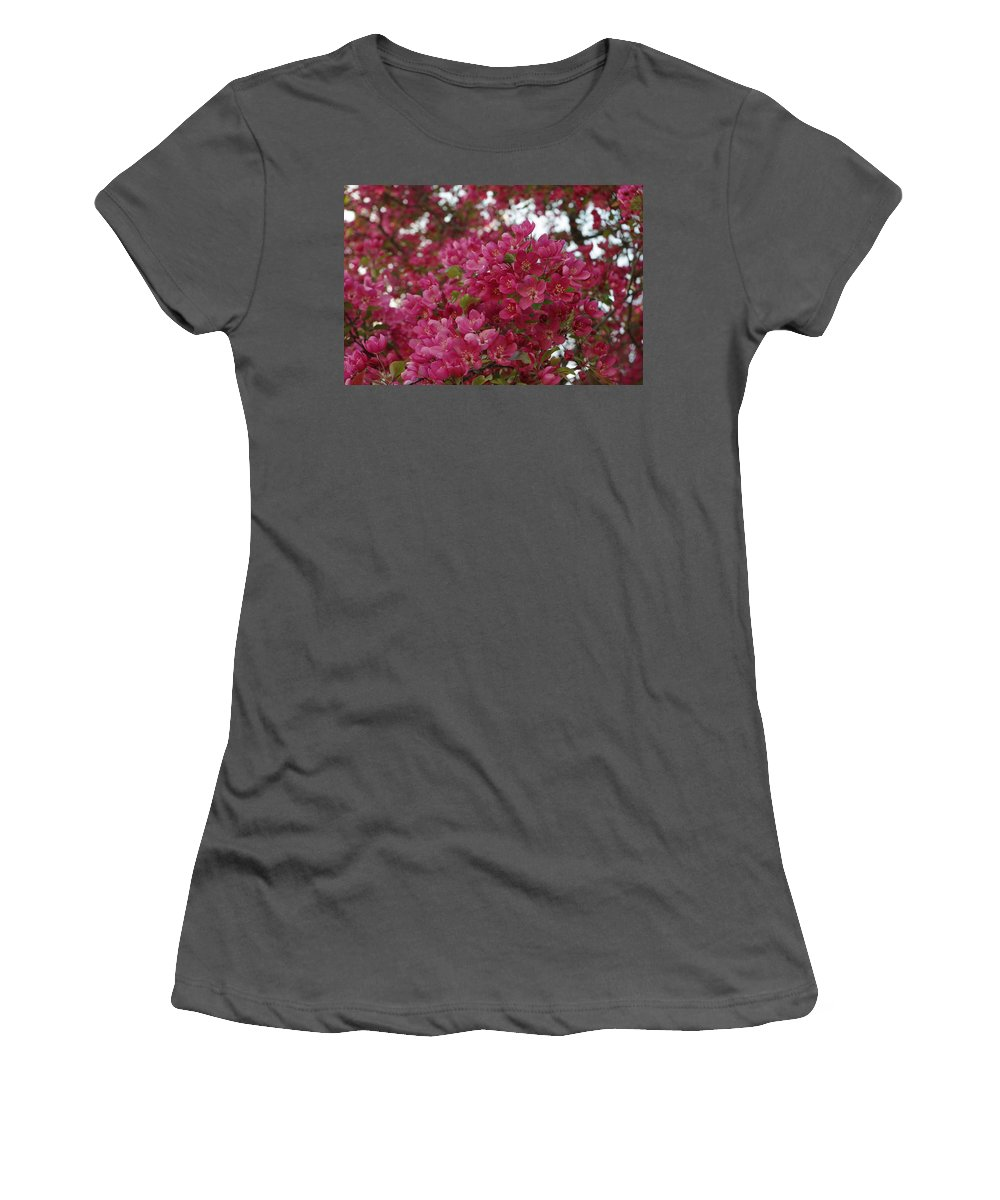 Pink Flowers Women's T-Shirt (Athletic Fit) featuring the photograph Pink Flowers On Blooming Tree by Alice Markham