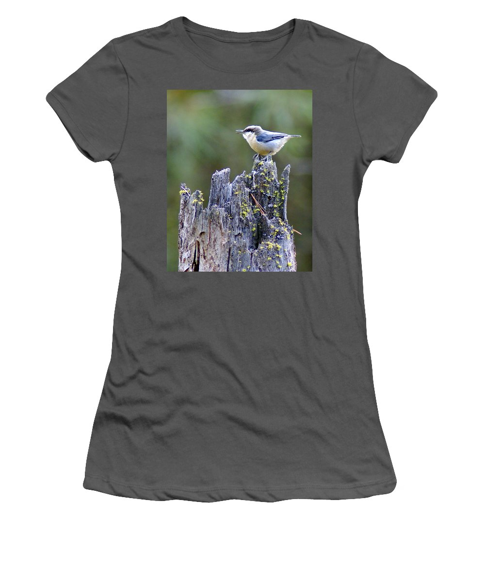 Birds Women's T-Shirt (Athletic Fit) featuring the photograph Pygmy Nuthatch by Ben Upham III