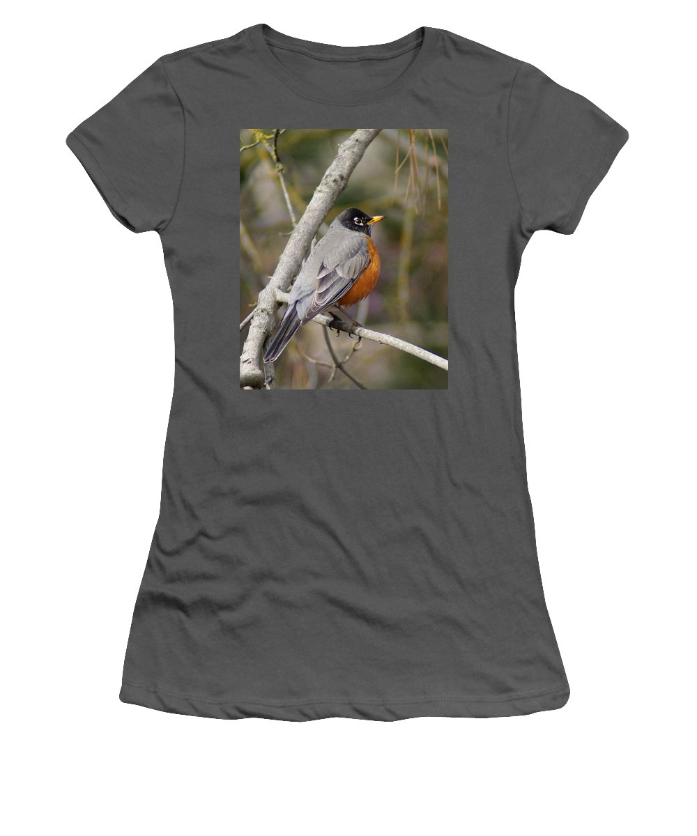 Birds Women's T-Shirt (Athletic Fit) featuring the photograph Robin In Tree 2 by Ben Upham III