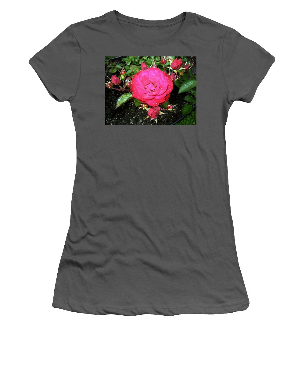 Rose Women's T-Shirt (Athletic Fit) featuring the photograph Roses 5 by Will Borden