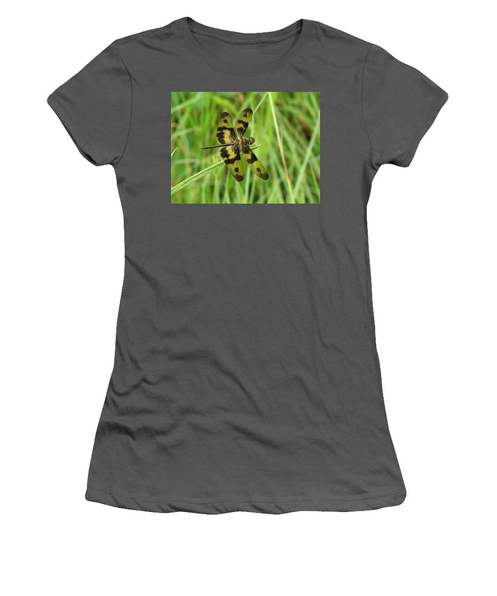 Dragonfly Women's T-Shirt (Athletic Fit) featuring the photograph Ryothemis Dragonfly by Bob Kemp