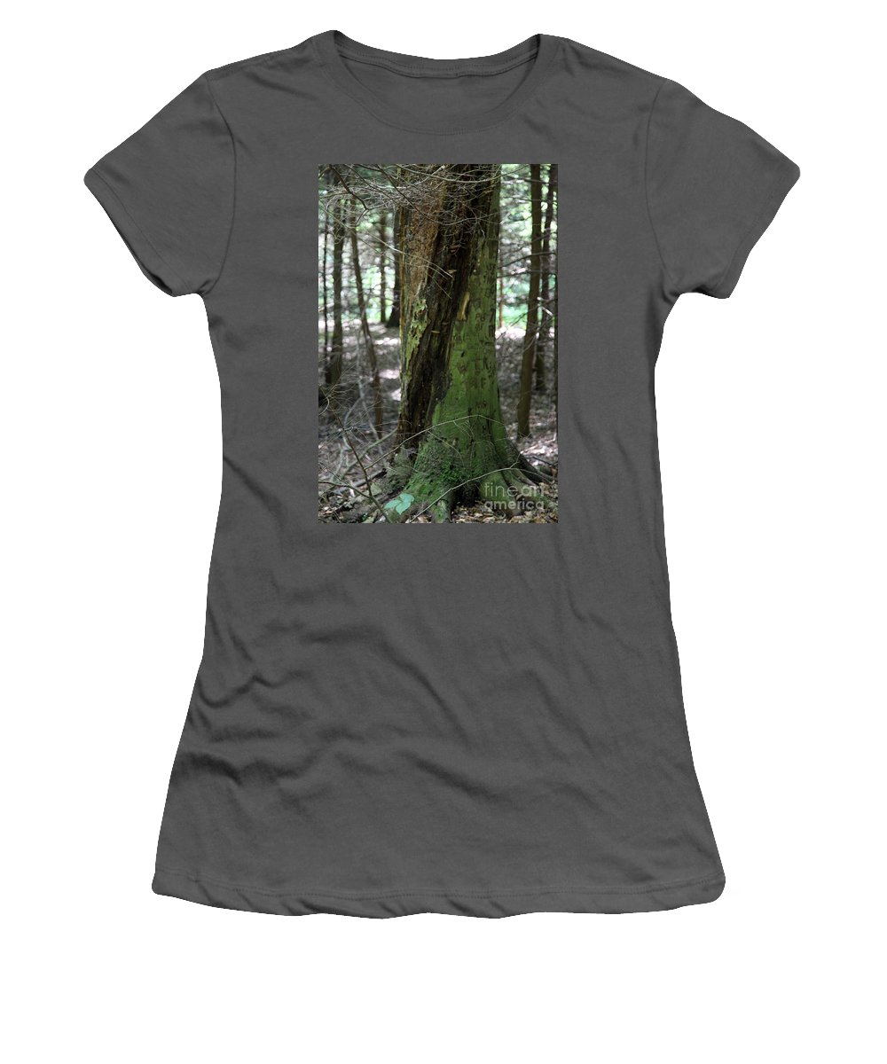Tree Women's T-Shirt (Athletic Fit) featuring the photograph Scarred by Amanda Barcon
