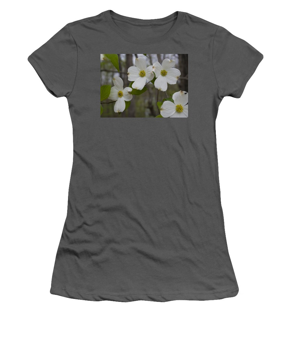 Flower Women's T-Shirt (Athletic Fit) featuring the photograph Season Of Dogwood by Andrei Shliakhau