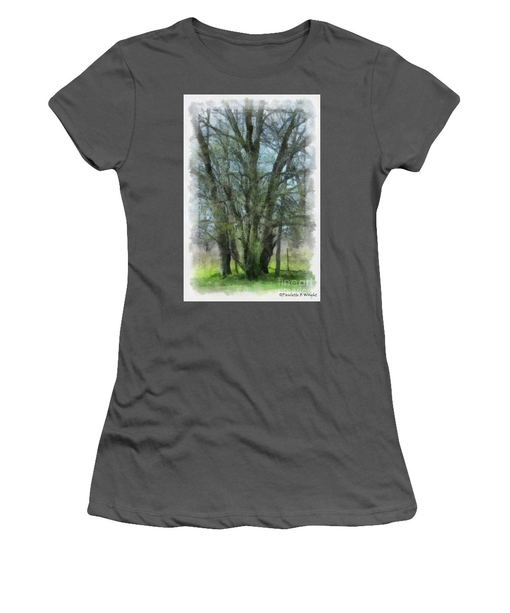Trees Women's T-Shirt (Athletic Fit) featuring the photograph Serenity by Paulette B Wright