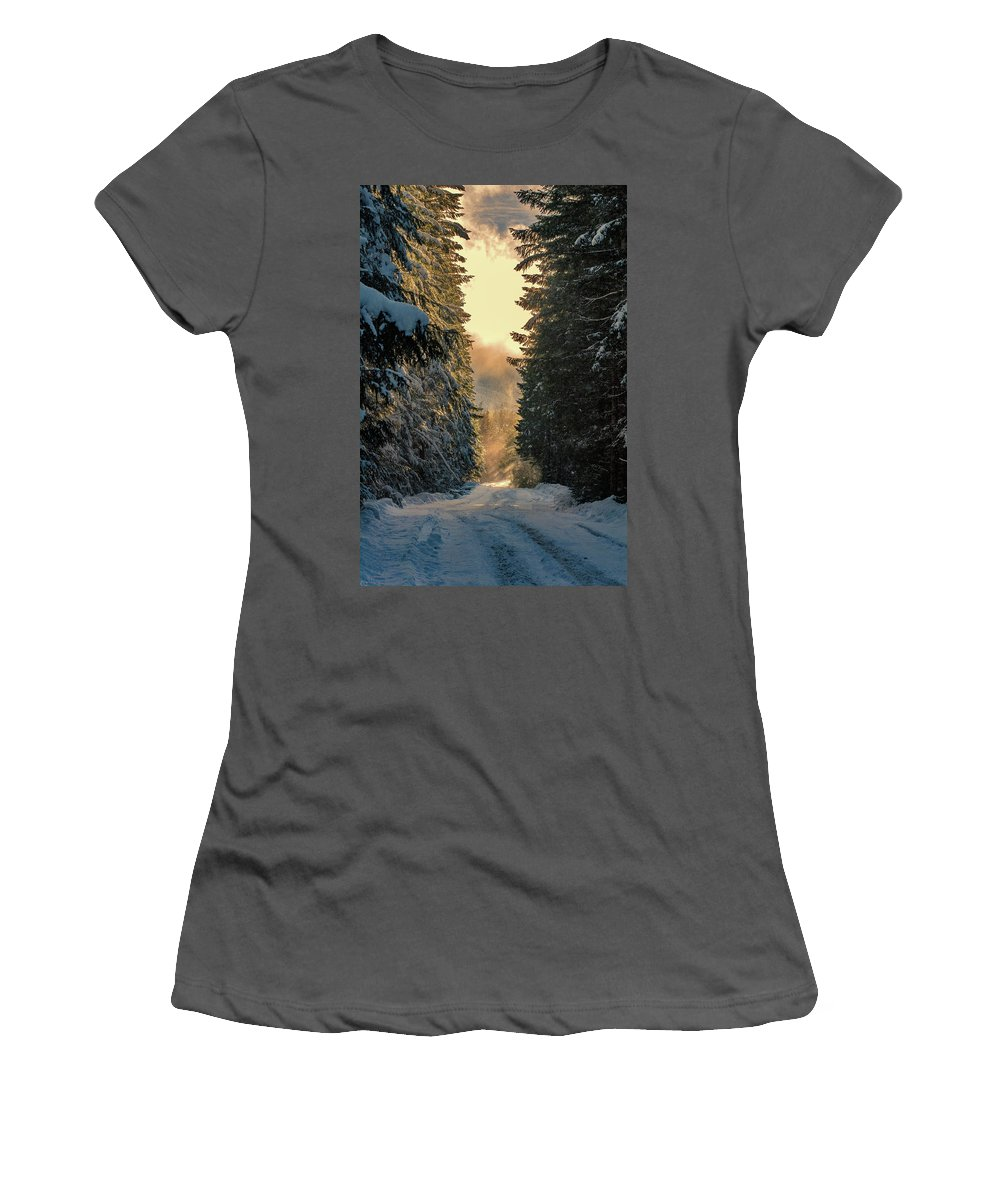 Women's T-Shirt (Athletic Fit) featuring the photograph Shawnigan Winter Road by Barry Reid