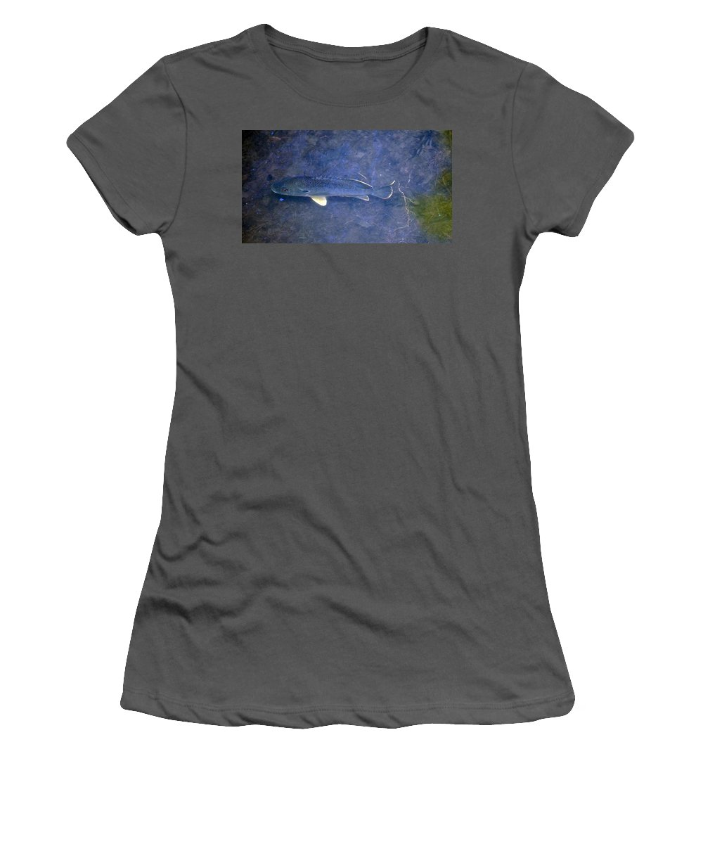 Fish Women's T-Shirt (Athletic Fit) featuring the photograph Shy Away by Lawrence Nunziato
