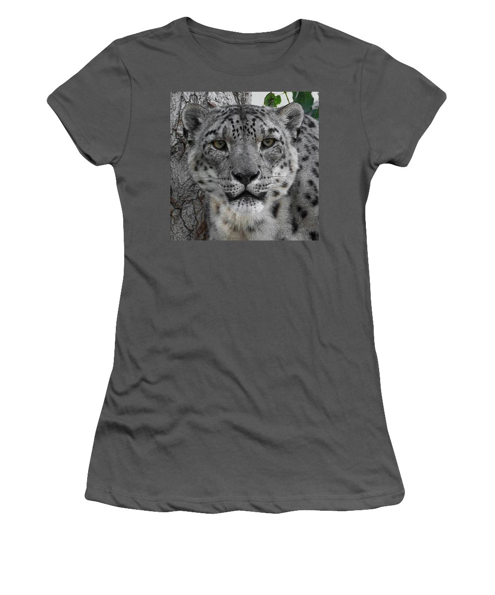 Animals Women's T-Shirt (Athletic Fit) featuring the photograph Snow Leopard 5 Posterized by Ernie Echols