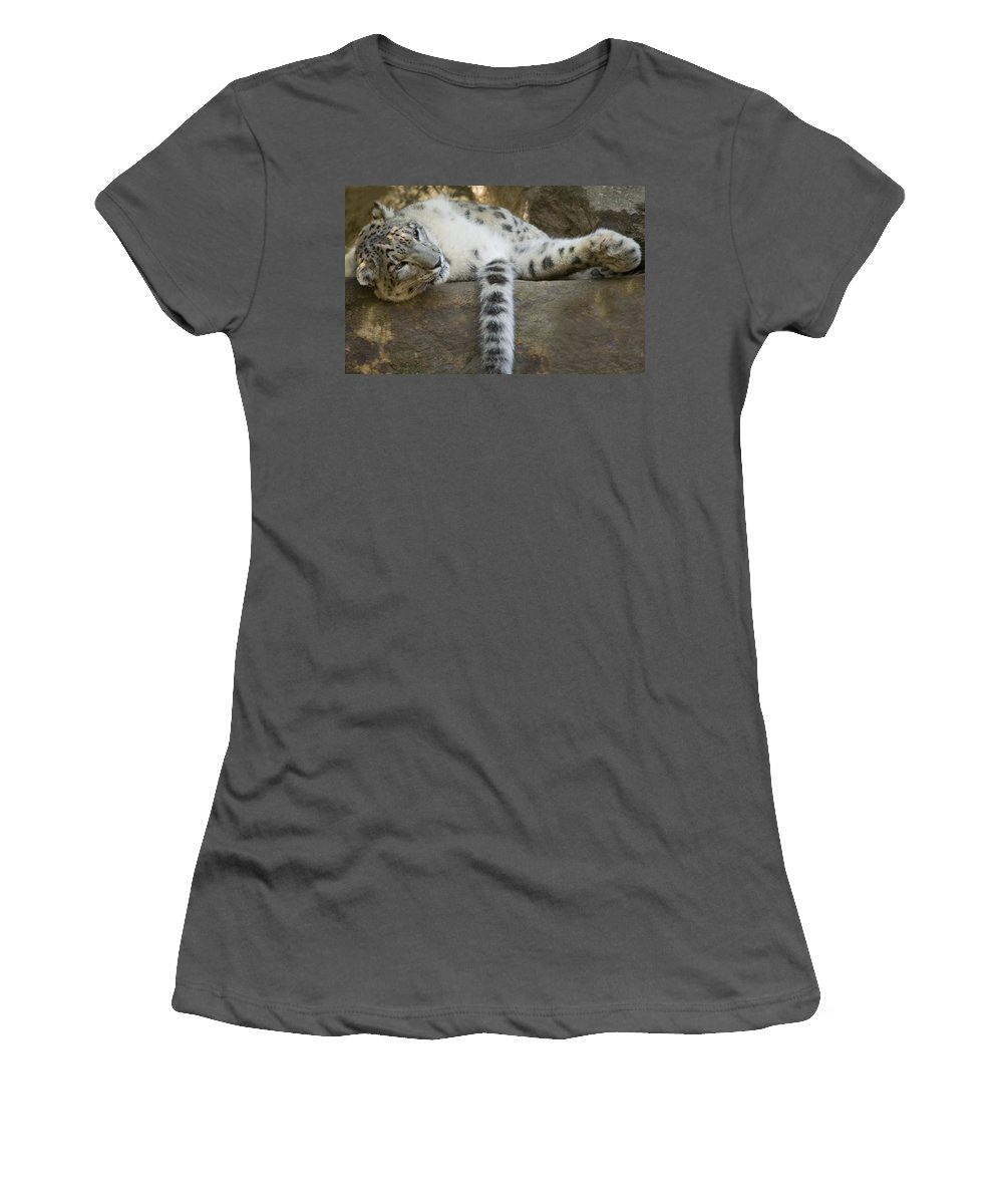 Snow Leopard Women's T-Shirt (Athletic Fit) featuring the photograph Snow Leopard Nap by Mike Dawson
