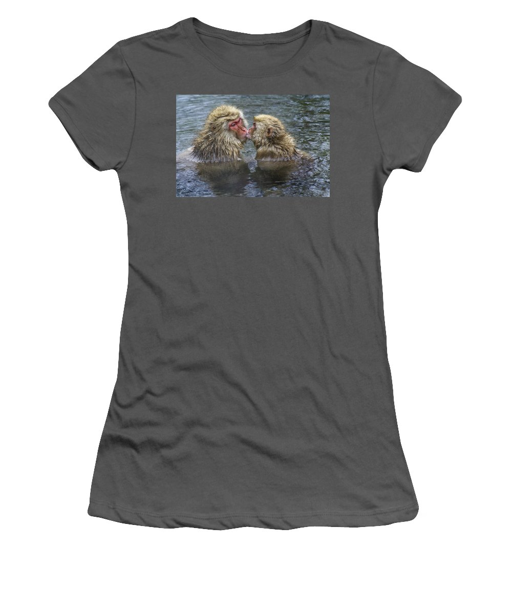 Snow Monkey Women's T-Shirt (Athletic Fit) featuring the photograph Snow Monkey Kisses by Michele Burgess
