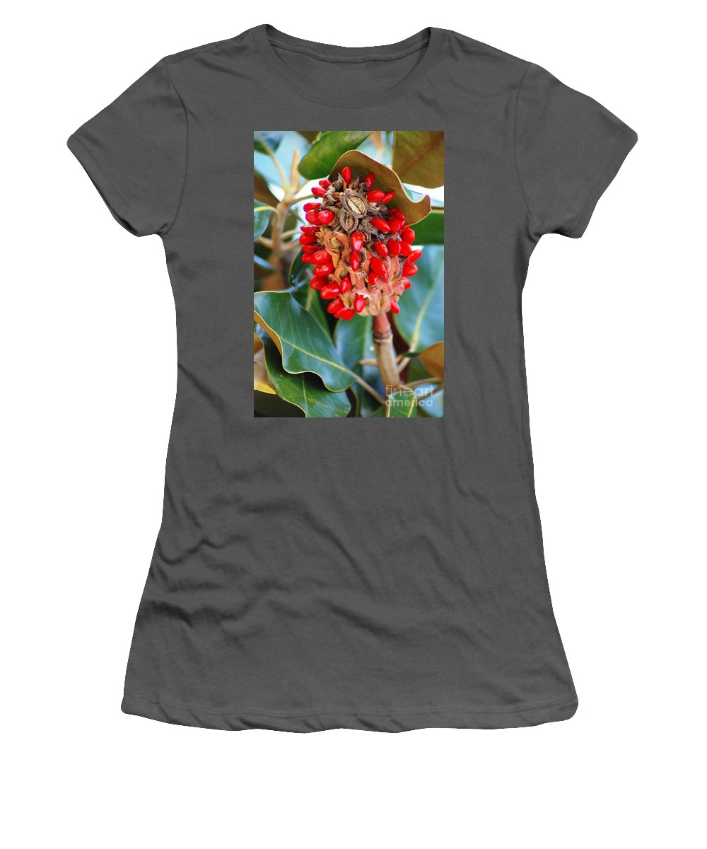 Magnolia Women's T-Shirt (Athletic Fit) featuring the photograph Southern Magnolia Seedpods by Donna Bentley