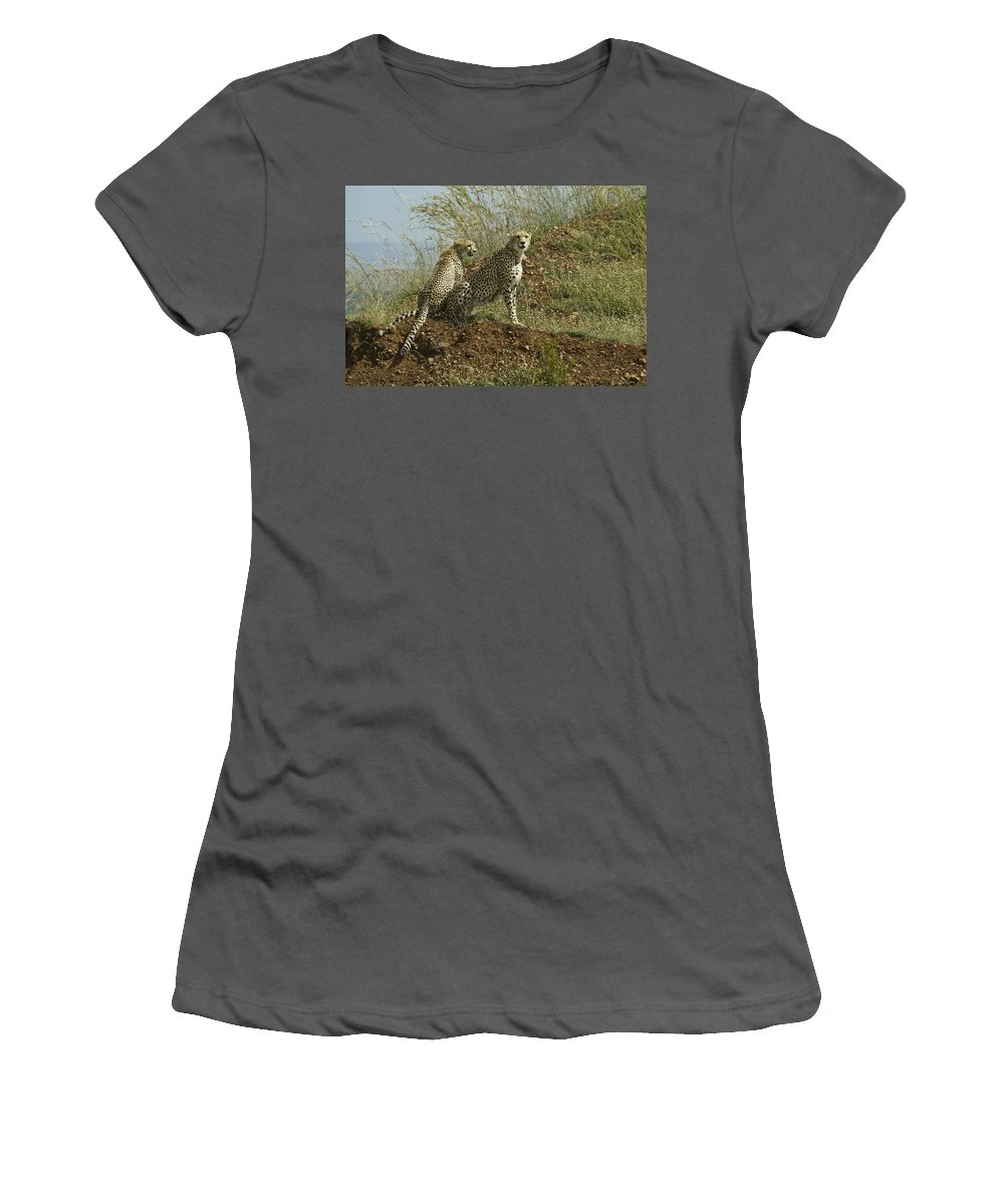 Africa Women's T-Shirt (Athletic Fit) featuring the photograph Spotted Cats by Michele Burgess