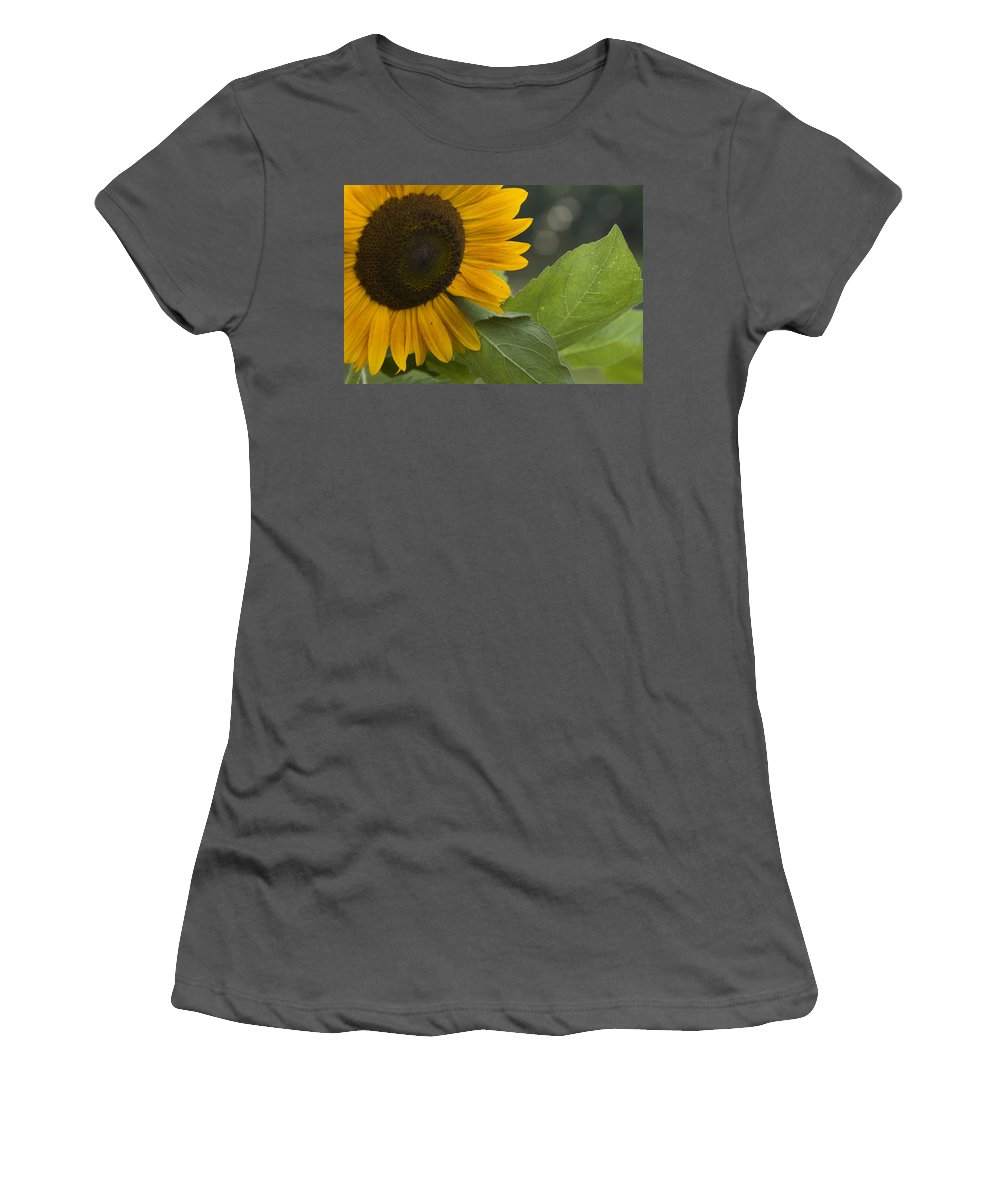 Flower Nature Farm Yellow Bright Sunflower Green Leaf Leaves Close Garden Organic Happy Women's T-Shirt (Athletic Fit) featuring the photograph Sunflower by Andrei Shliakhau