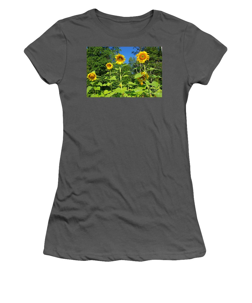 Sunflower Women's T-Shirt (Athletic Fit) featuring the photograph Sunflowers by Zalman Latzkovich