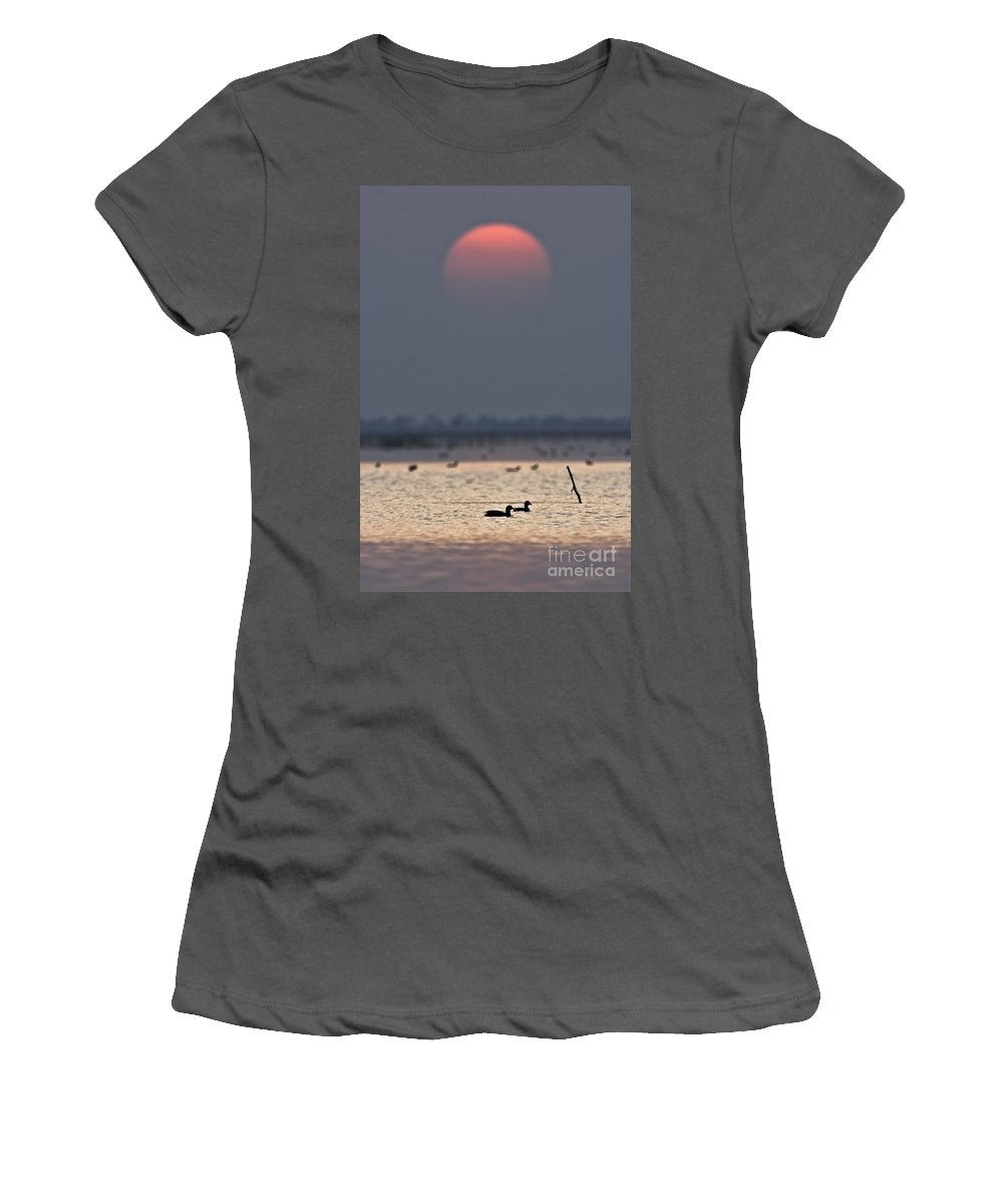 Sunset Women's T-Shirt (Athletic Fit) featuring the photograph Sunset With Coots by Hitendra SINKAR