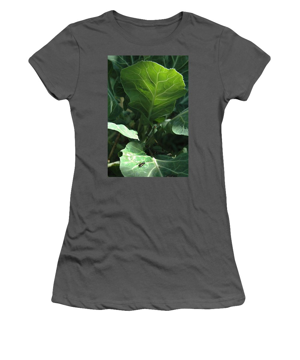 Cabbage Women's T-Shirt (Athletic Fit) featuring the photograph Super-fly Cabbage by Trish Hale